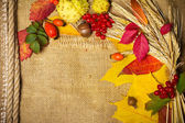秋季元素背景与副本空间 — 图库照片