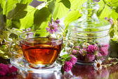 Herbal tea with clover and chamomile — Stock Photo