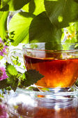 Herbal tea with mint — Stock Photo
