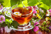 Herbal tea — Stock Photo