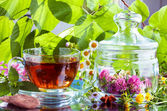 Herbal tea with natual cocoa and fresh herbs — Stock Photo