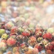 Stock Photo: Strawberries on light background. Wild berries. Background.