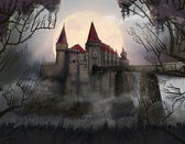 Castle. Thickets. Romania. Horror — Stock Photo