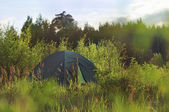 Tent on a green meadow. Summer — Stock Photo