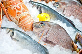 Fresh seafood arrangement — Stock Photo