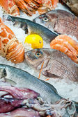 Fresh seafood arrangement — Stock Photo
