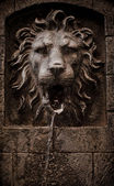Lion head fountain — Stock Photo