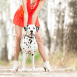 Sexy young woman with dog. — Stok fotoğraf