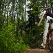 Young woman with bicycle in forest — Stock fotografie