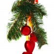 Christmas tree branch — Stock Photo #11439083