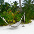 Hammock on the tropical beach — Stock Photo #11439836