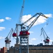 Sea port cranes - Stock Photo