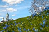 Helsinki cathedral (Finland) — Foto de Stock