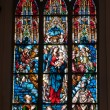 Stained glass from Riga carhedral — Foto Stock