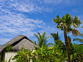 Maldivian bungalow — Stock Photo