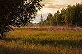 Iglesia rural — Foto de Stock