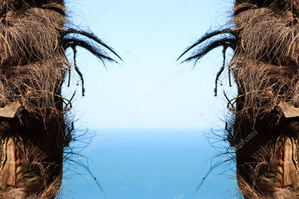 Palm trees trunk forming frame of ocean water and summer sky — Stock Photo #11440628