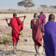 Masai warriors , kenya — Stock Photo #11504589