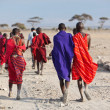 Masai warriors , kenya — Stock Photo #11509396