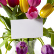 Tulips with card in a vase — Stock Photo