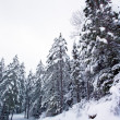 Snow machine trail — Stockfoto