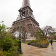 The eiffel tower in paris — Stok fotoğraf