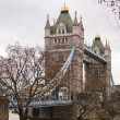 Tower bridge — Stock Photo #11725948