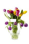 Colorful tulips in vase with a card — Stock Photo
