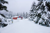 Snowy garage — Stock Photo