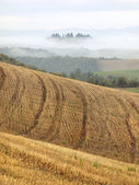 Tuscan Fields — Stockfoto