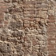 Stock Photo: Tuscwall