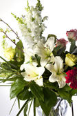 Vertical Bouquet on White — Stock Photo