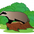 Stock Vector: Badger beside bush