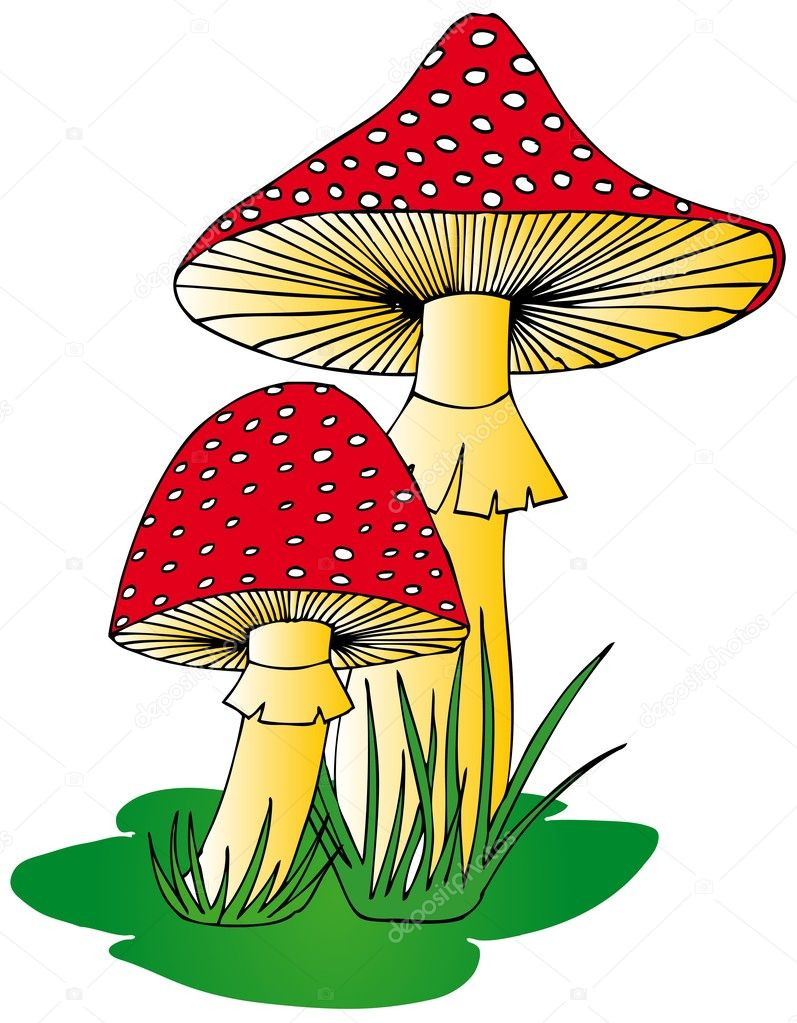 Toadstool in grass - vector illustration.  Stock Vector #11419592