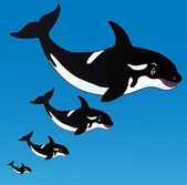 Orcas in the ocean — Stockvektor