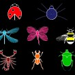 Set of various insects — Stock Vector