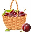 Ripe plums in the basket. — Stock Vector #11520958