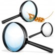 Stock Vector: Vector magnifying glass.