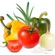 Vector de stock : Vegetables.