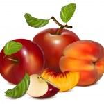 Постер, плакат: Red apples and ripe peaches