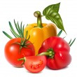 Vector de stock : Vegetables