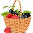 Ripe forest berries in the basket. — Stock Vector