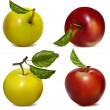 Set of red and green apples. — Stock Vector #11522358