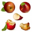 Set of red apples — Stock Vector #11522363
