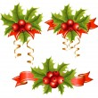 Vector holly with berries. — Stock Vector