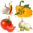 Vector set of vegetables: garlic, chili peppers, bell-peppers, tomatoes and onions — Stock Vector #11522428
