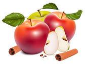 Vector fruits — Stock Vector