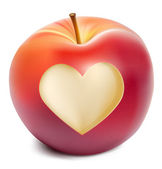 Vector red apple with a heart symbol — Stock Vector