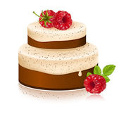 Vector cake with ripe raspberries — Vecteur