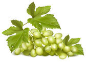 Green grapes with leaves. — Stock Vector